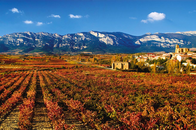 Rioja alavesa turismo euskadi for Hoteles con encanto en la rioja alavesa